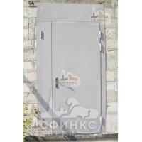 Металлическая дверь - 61-13