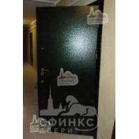 Металлическая дверь - 61-04