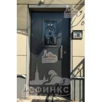 Металлическая дверь - 61-38