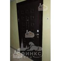 Металлическая дверь - 61-03