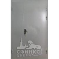 Металлическая дверь - 61-14