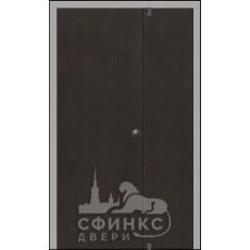 Металлическая дверь - 62-45
